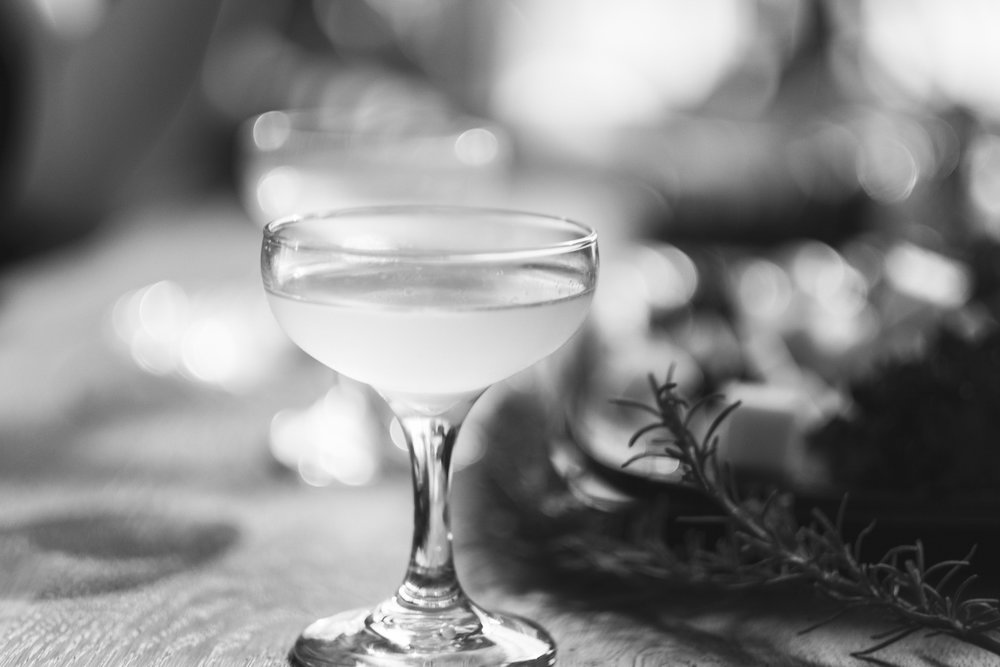 Hypothesis Cocktails B&W_March 23, 2018-12_resize.jpg