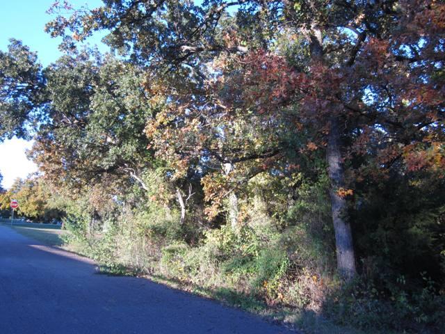 Kenwood Park - Shawnee OK (3).JPG