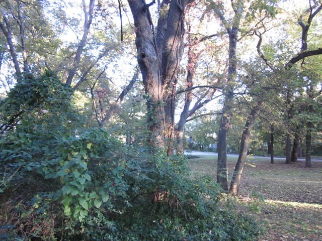 Kenwood Park - Shawnee OK (16).JPG