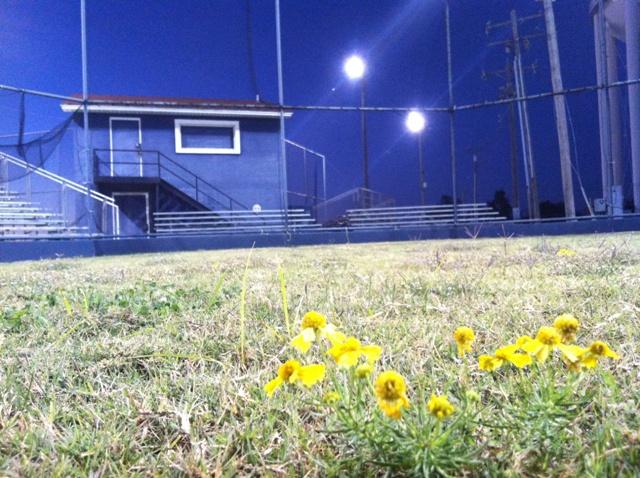 Lion's Club Ballpark - Shawnee OK (8).jpg