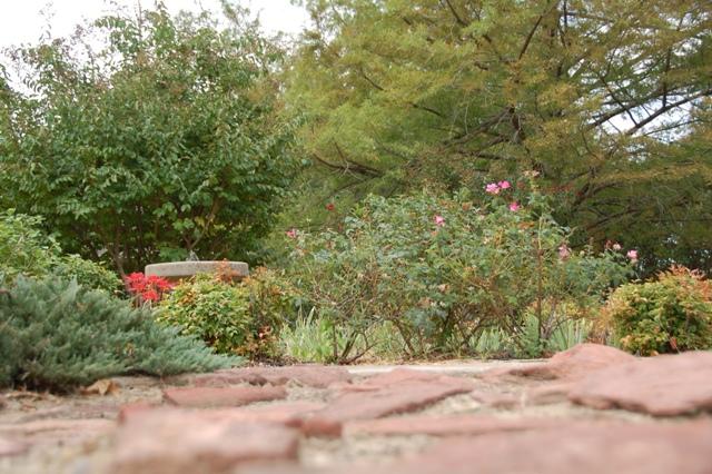 Rose Garden Park - Shawnee OK (9).JPG