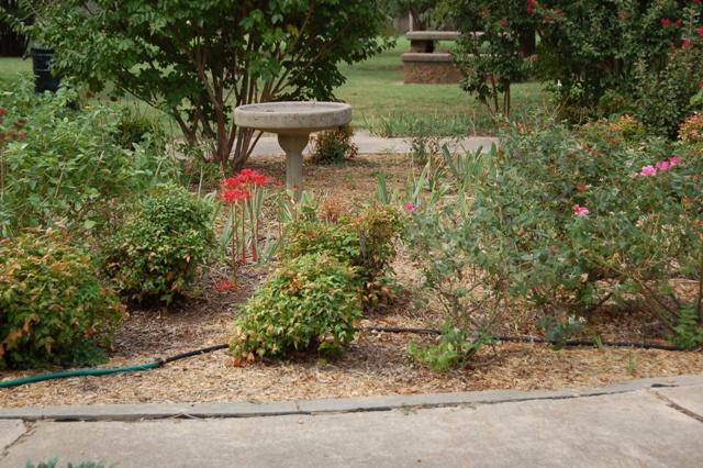 Rose Garden Park - Shawnee OK (10).JPG
