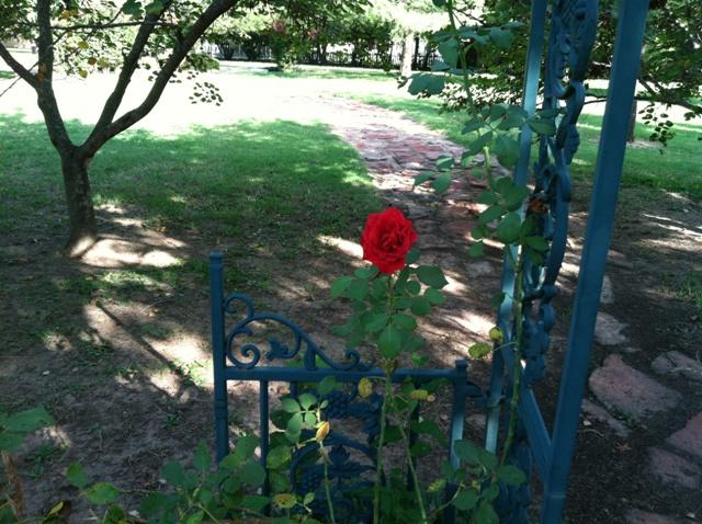 Rose Garden Park - Shawnee OK (15).jpg