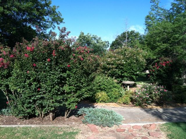 Rose Garden Park - Shawnee OK (20).jpg