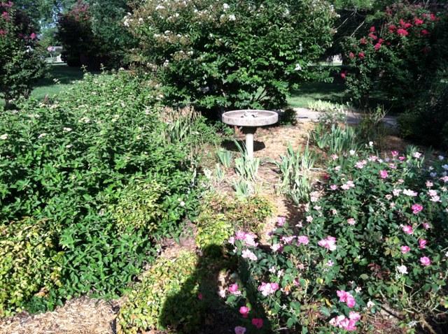 Rose Garden Park - Shawnee OK (21).jpg