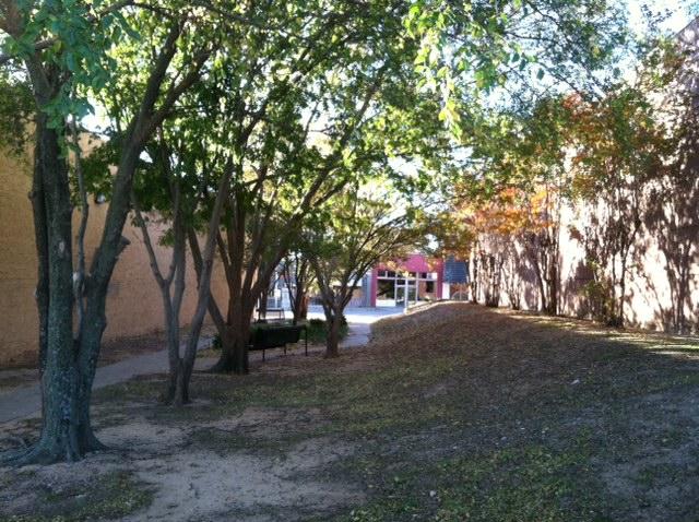 Library park.JPG