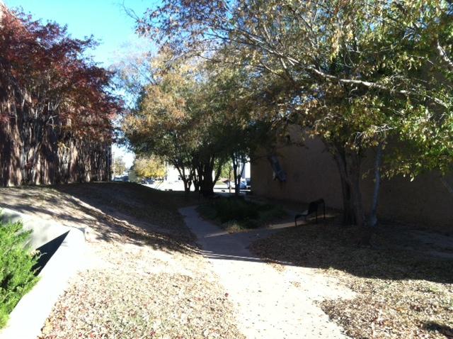 Library park (4).JPG