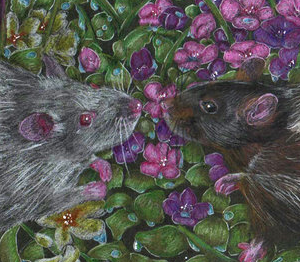 Screen Shot 2018-04-26 at 5.22.03 PM.png