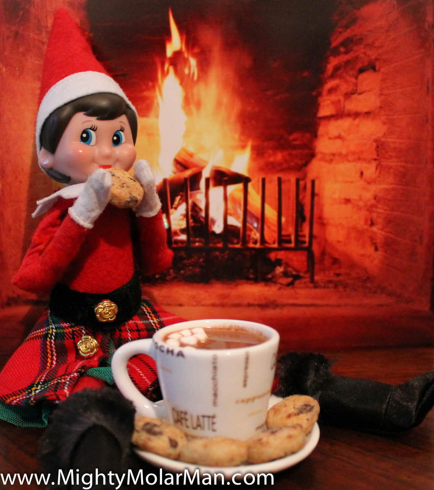 Elf On The Shelf Photo Contest-3.jpg