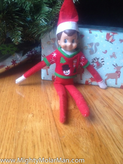 Elf On The Shelf Photo Contest-5.jpg