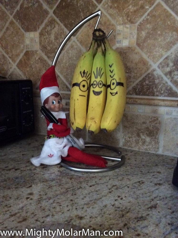 Elf On The Shelf Photo Contest-8.jpg