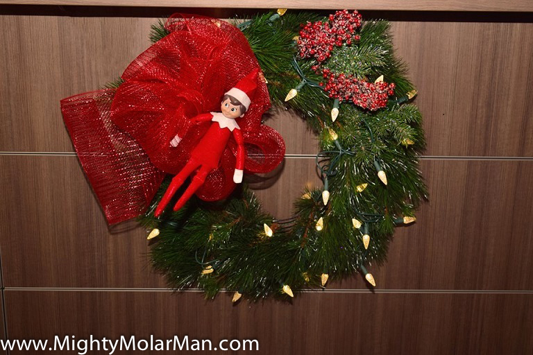 Elf On The Shelf Photo Contest-33.jpg