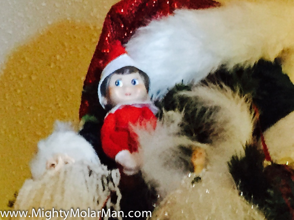 Elf On The Shelf Photo Contest-46.jpg