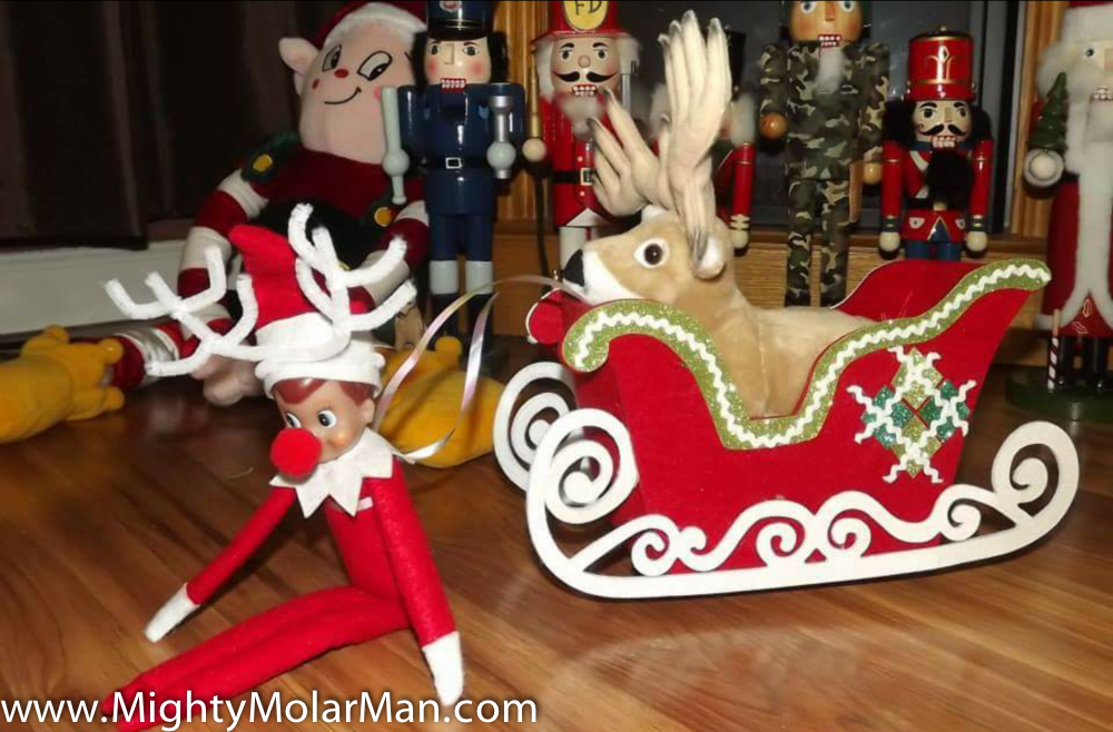 Elf On The Shelf Photo Contest-50.jpg