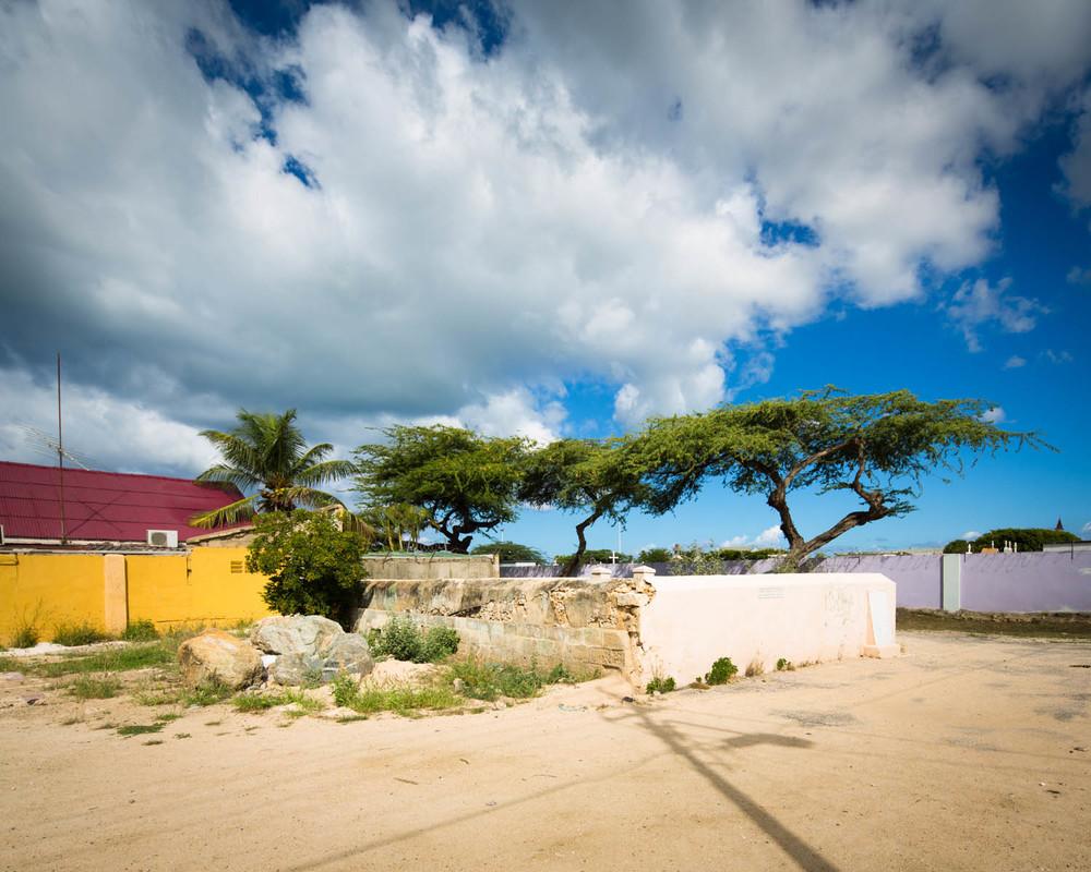 Aruba_2013_00092.jpg