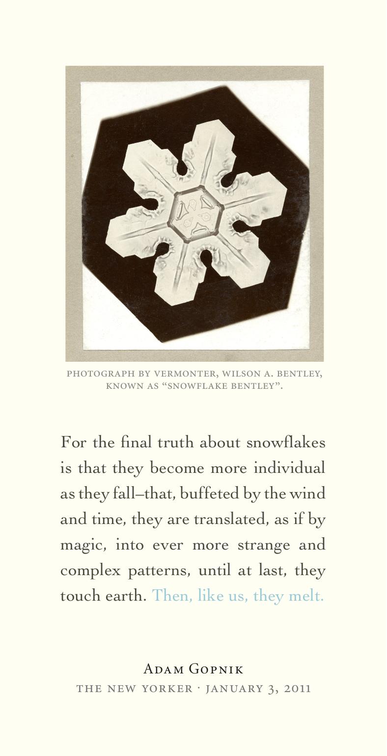 Snowflake_broadside.jpg