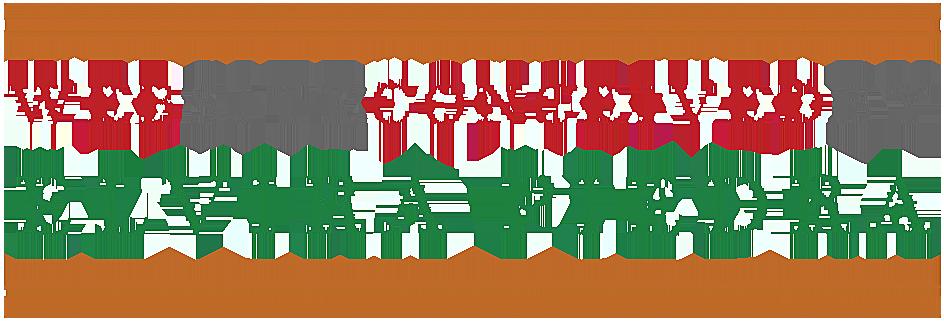 Website design by Elvira Piedra
