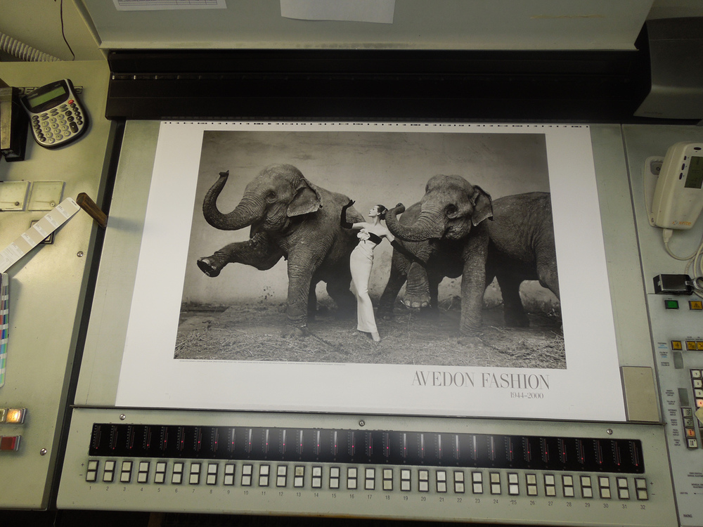 Dovima and the Elephants   Fotofolio poster printed at Puritan Capital