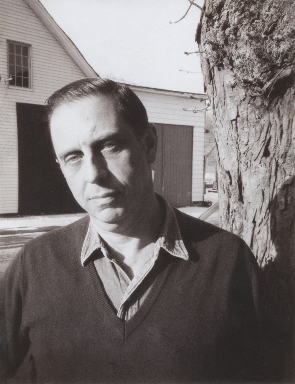 Lee Friedlander.jpg