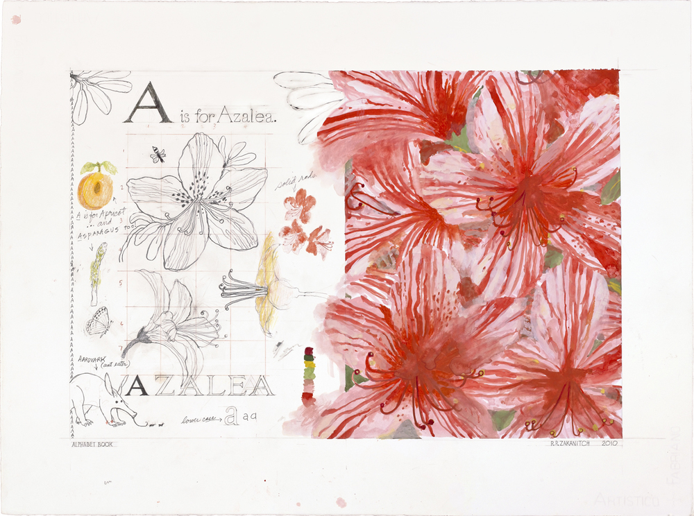 Robert Rahway Zakanitch ,  Azalea   From  A Garden of Ordinary Miracles Deluxe Edition: An Alphabet Book,  by Robert Rahway Zakanitch.  The deluxe edition book from  Rizzoli  is presented in a clamshell box which includes a pigment ink print of the Azalea watercolor image.   www.zakanitch.com