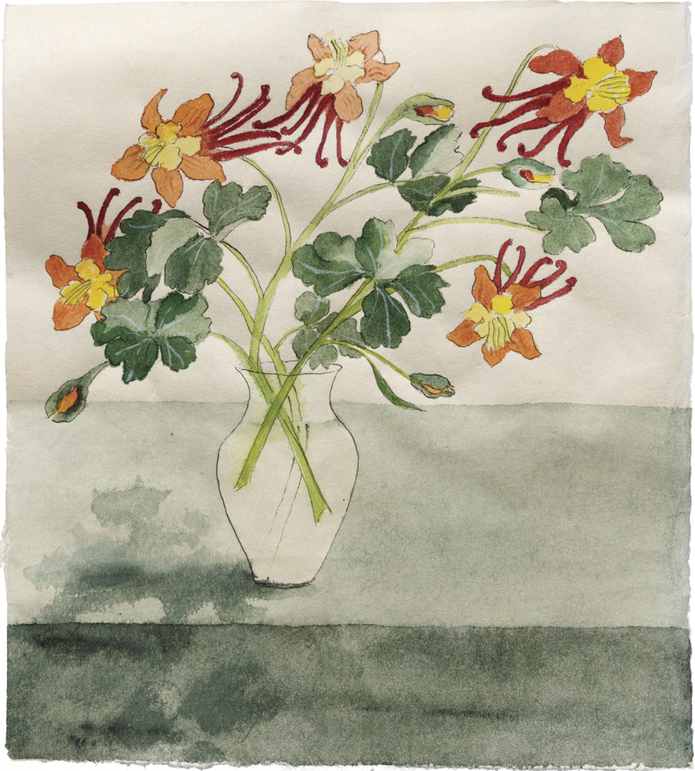 Ann Arnold   Columbines , Sumi-e painting  Archival pigment ink prints of this painting can be purchased in the  Shop .