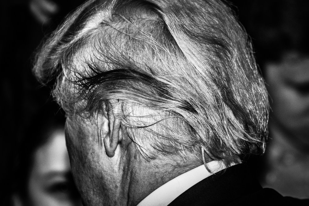 Trump's Hair-1.jpg
