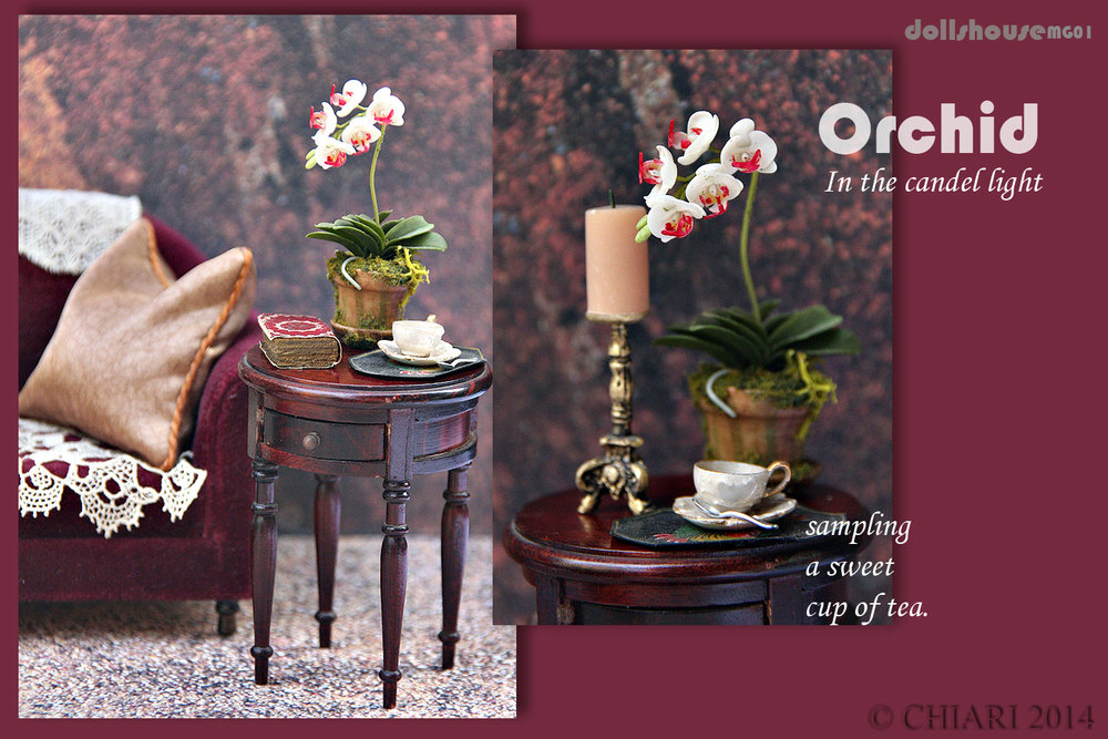 DOLMG-Orchid-CHIARIstyle-14.jpg