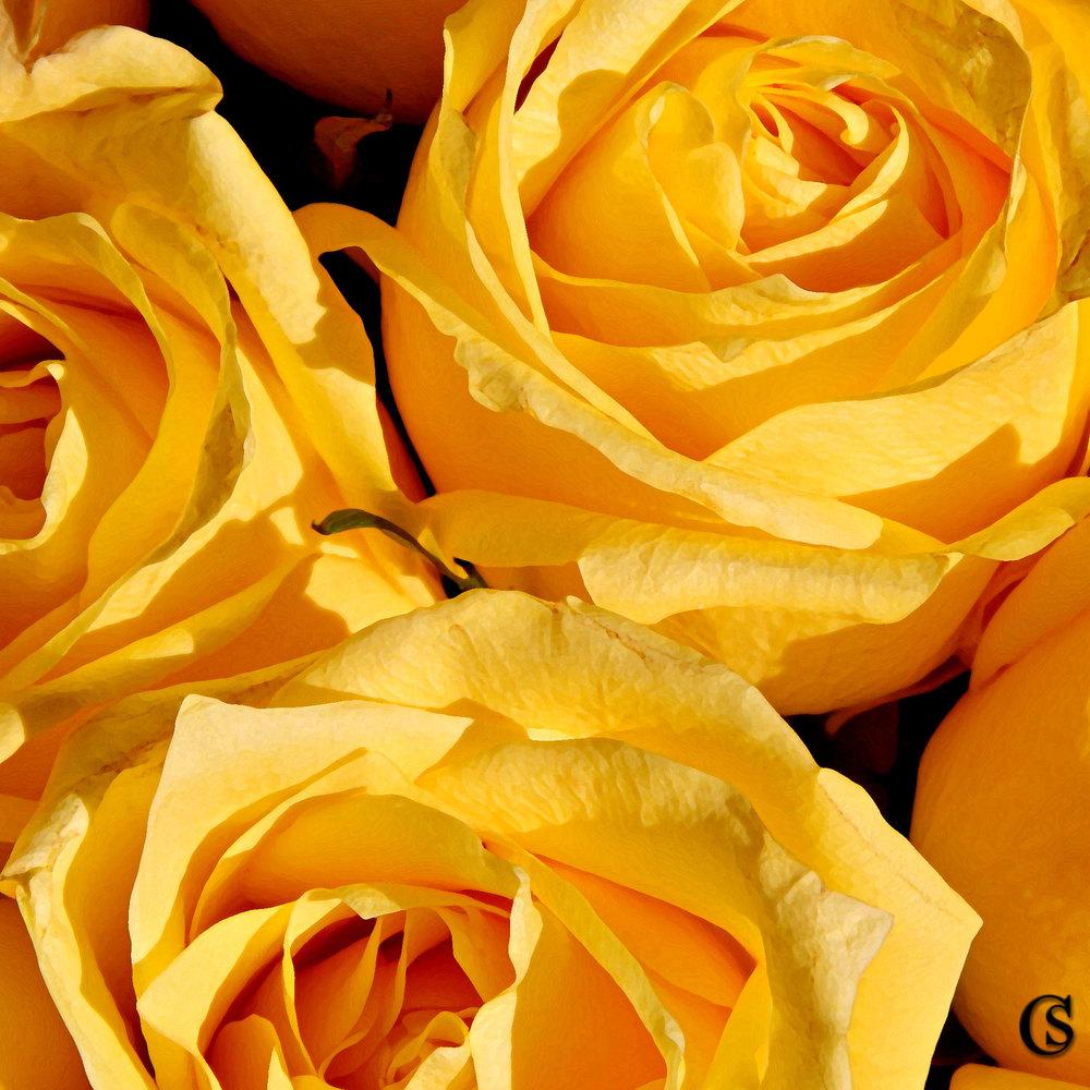 lemon-CHIARIstyle.jpg