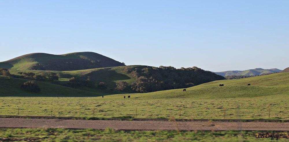 countryside-slo CHIARIstyle.jpg