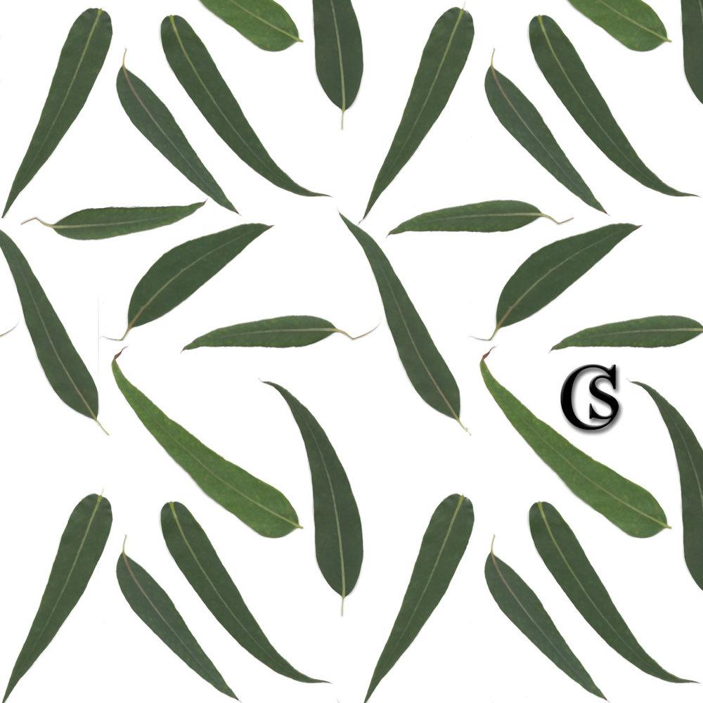 leaf-print-chiaristyle-m17.jpg