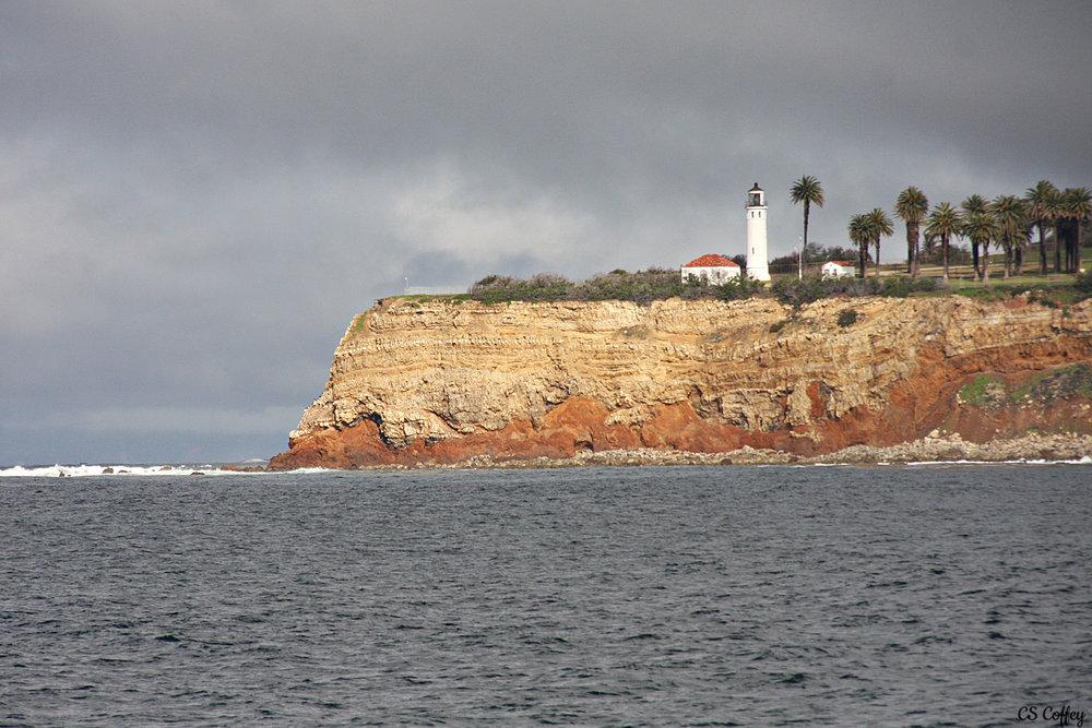whale-trip-feb-17-light-house-CHIARIstyle.jpg