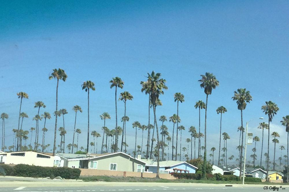Ventura Harbor CHIARIstyle