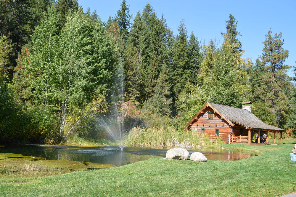 The pond at Mountain Springs Lodge...