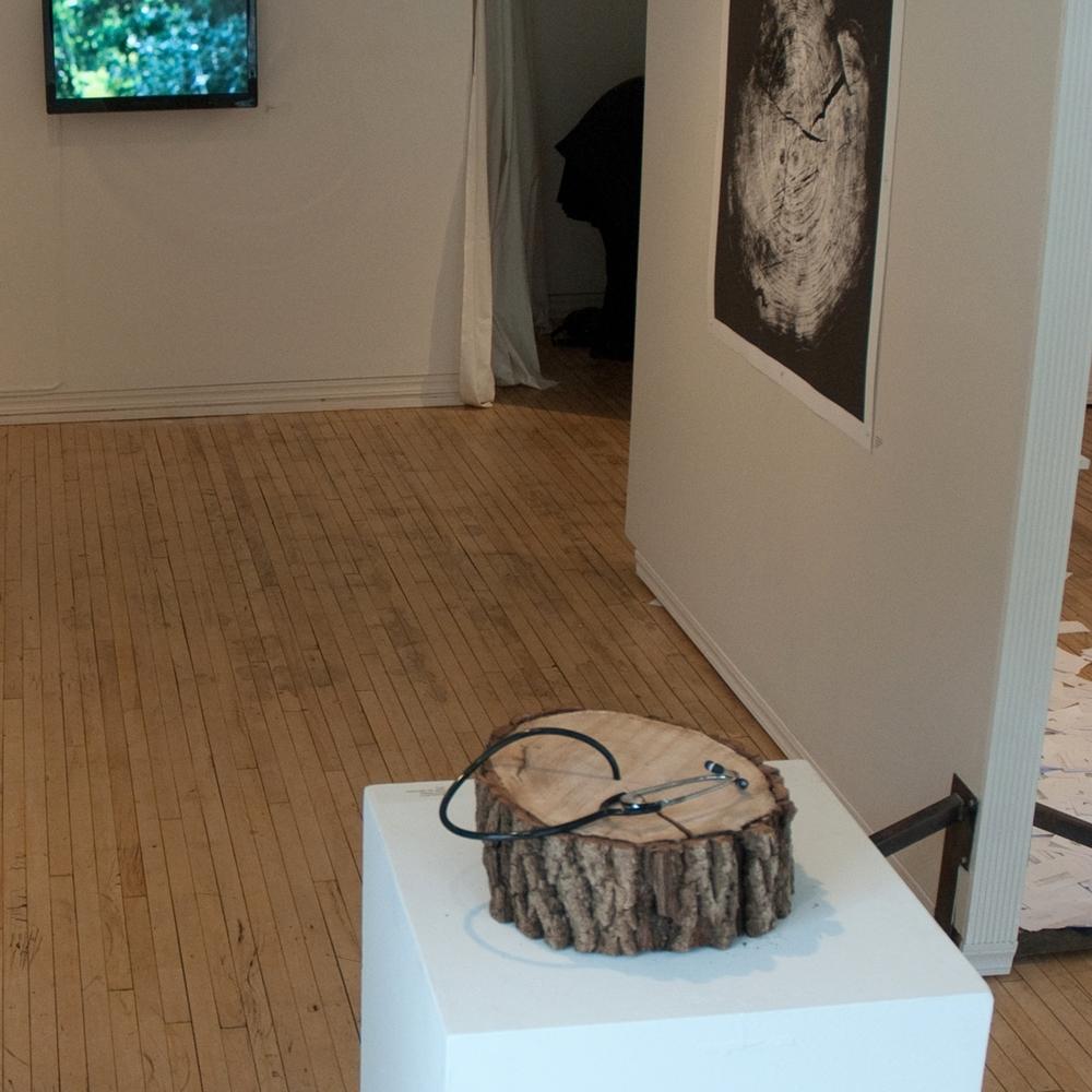 Artificial Environments (2013)