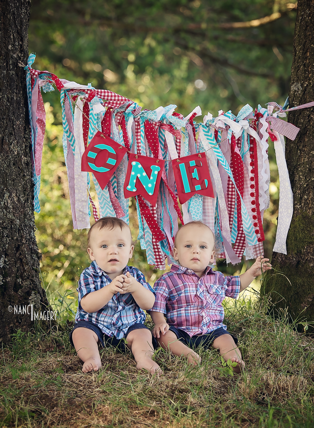Twins first birthday, Nanci Imagery