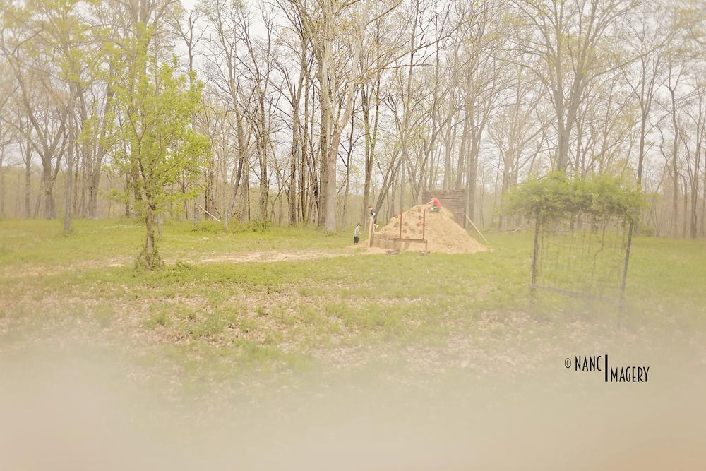 Spring Illinois Trip 2016-7207 copy.jpg