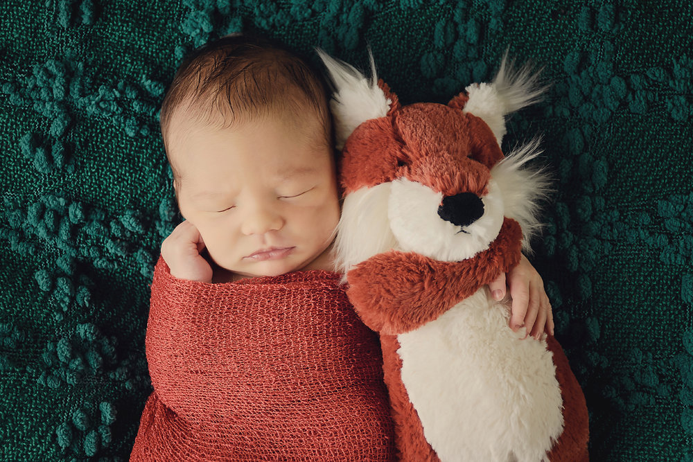 Newborn Photography Little fox