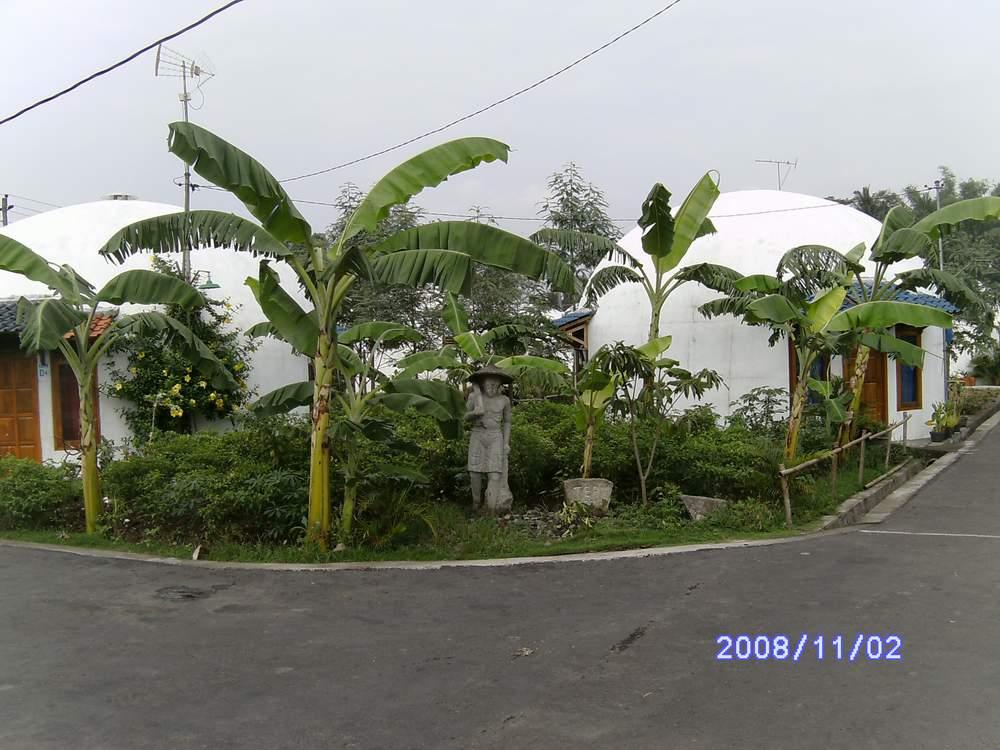PICT2328.JPG