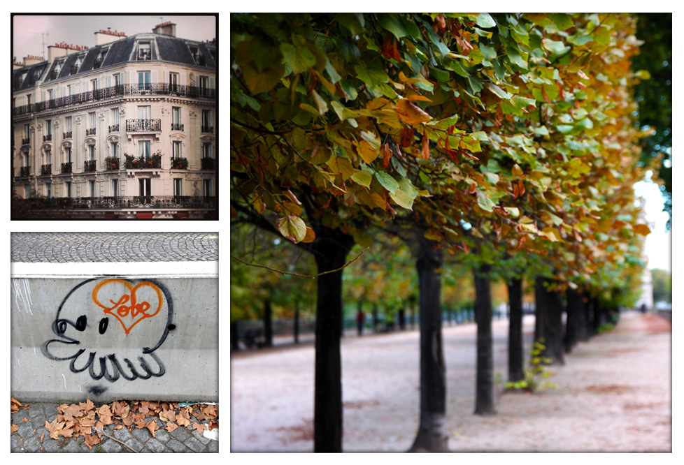 (clockwise from top left) Near Notre Dame, Jardin de Tuileries, along Quai de Tuileries