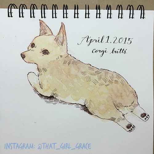 April 1 : Corgi Butts