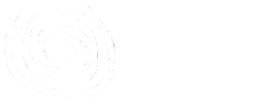 CAI_logo_FINAL.png