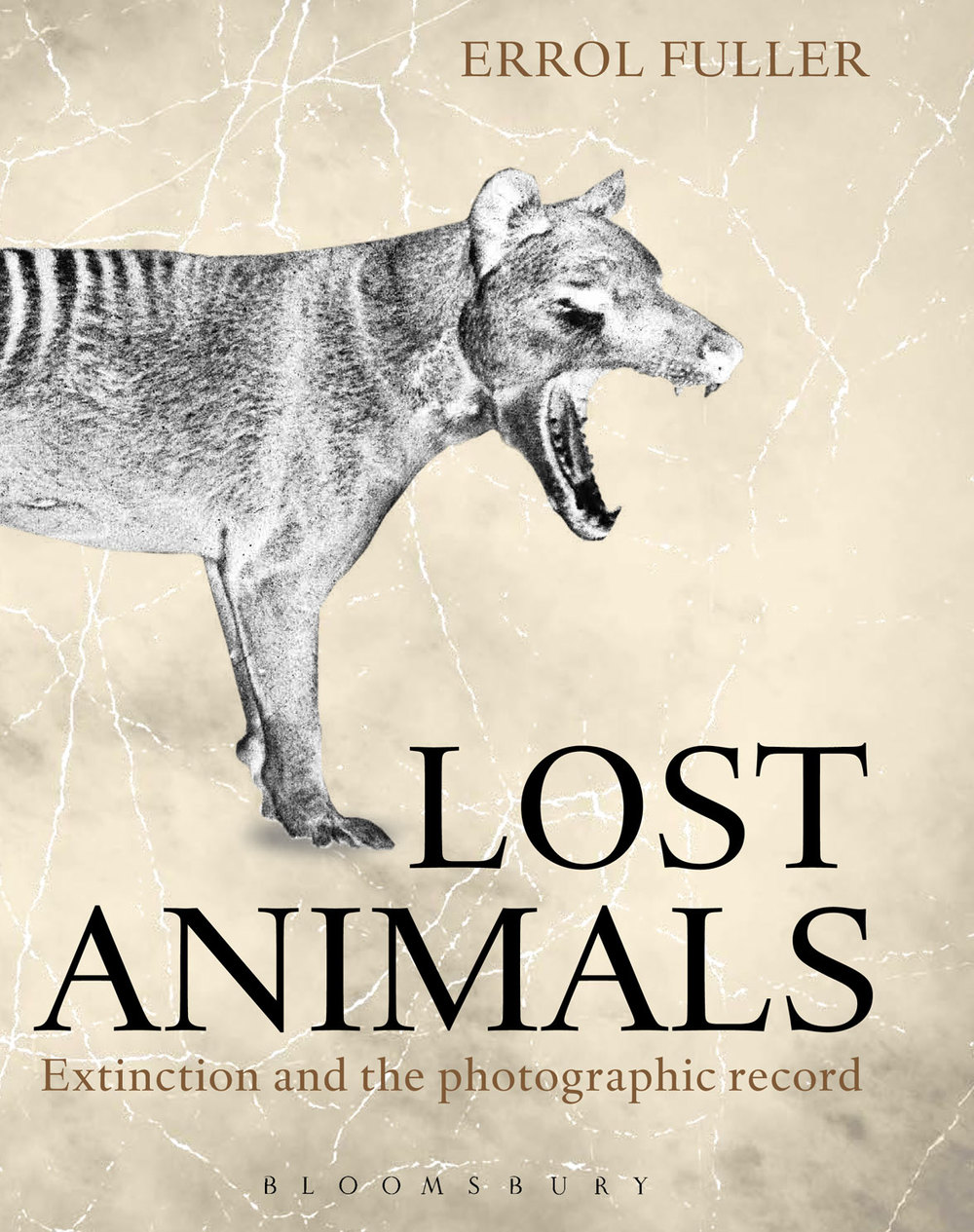 LOST-ANIMALs-cover.jpg
