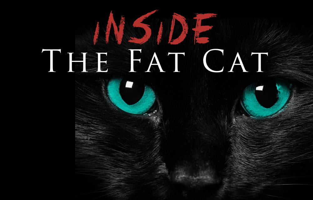 Here kitty kitty... Things heat up inside the Fat Cat starting at 9pm with DJs Topek, Tease, and Panduh.