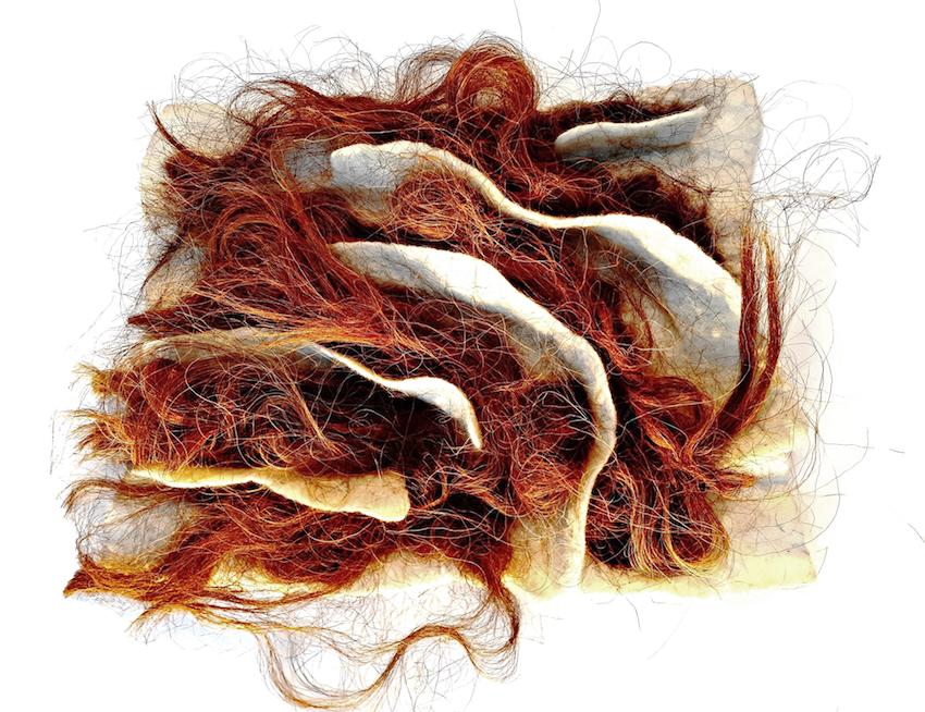 Base de lã de Merina Branca com velo de Churra da Terra Quente / White Merino wool with Churra da Terra Quente fleece