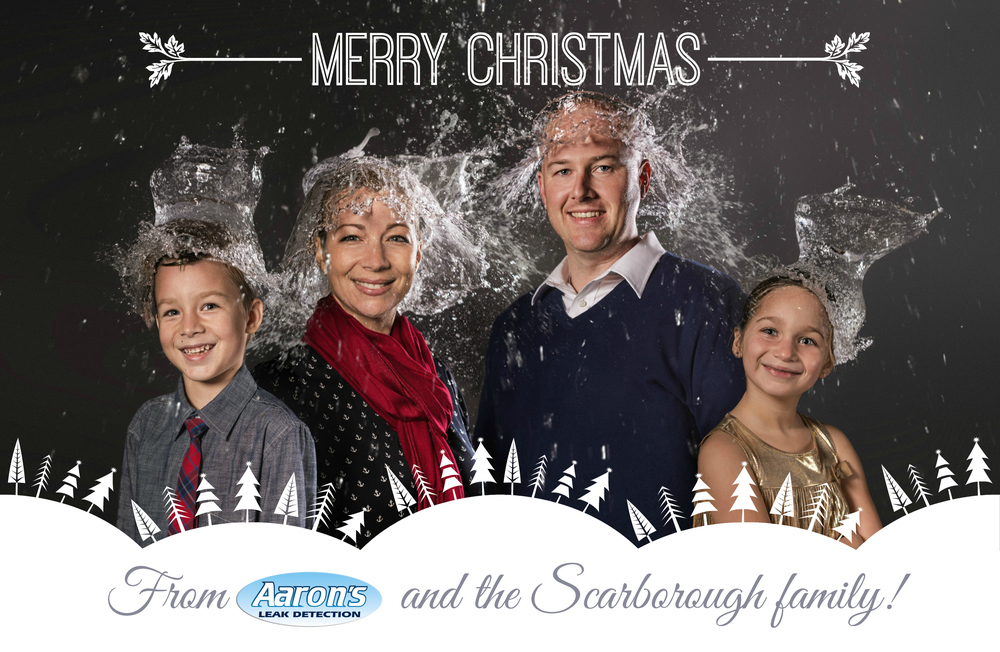 2013ChristmasCard_425x55.jpg