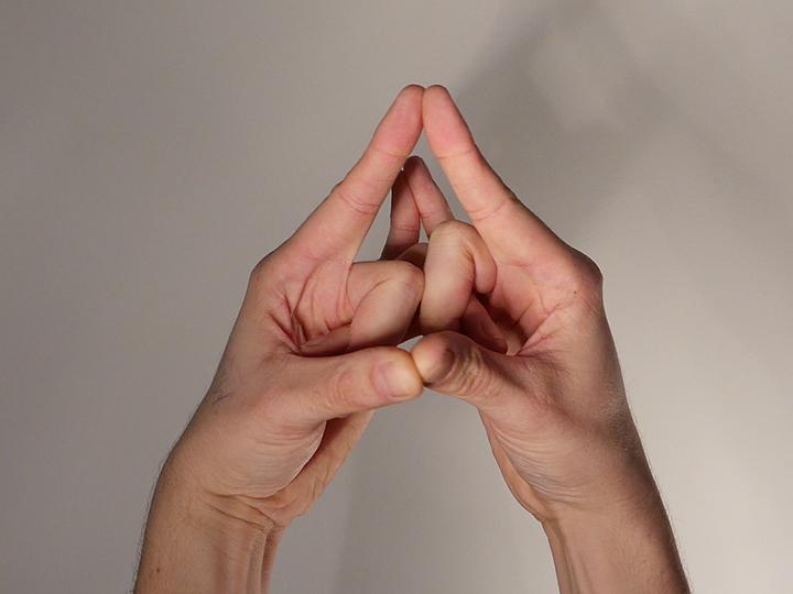 hand-mudra-sha.jpg