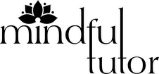 Mindful Tutor
