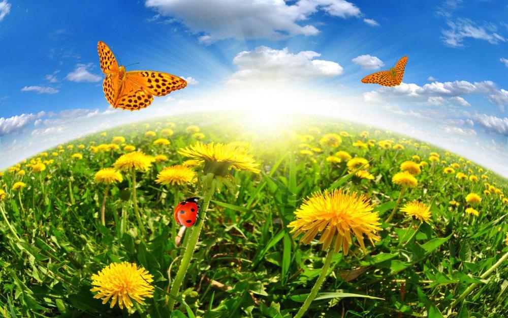 beautiful_day-1567121.jpg