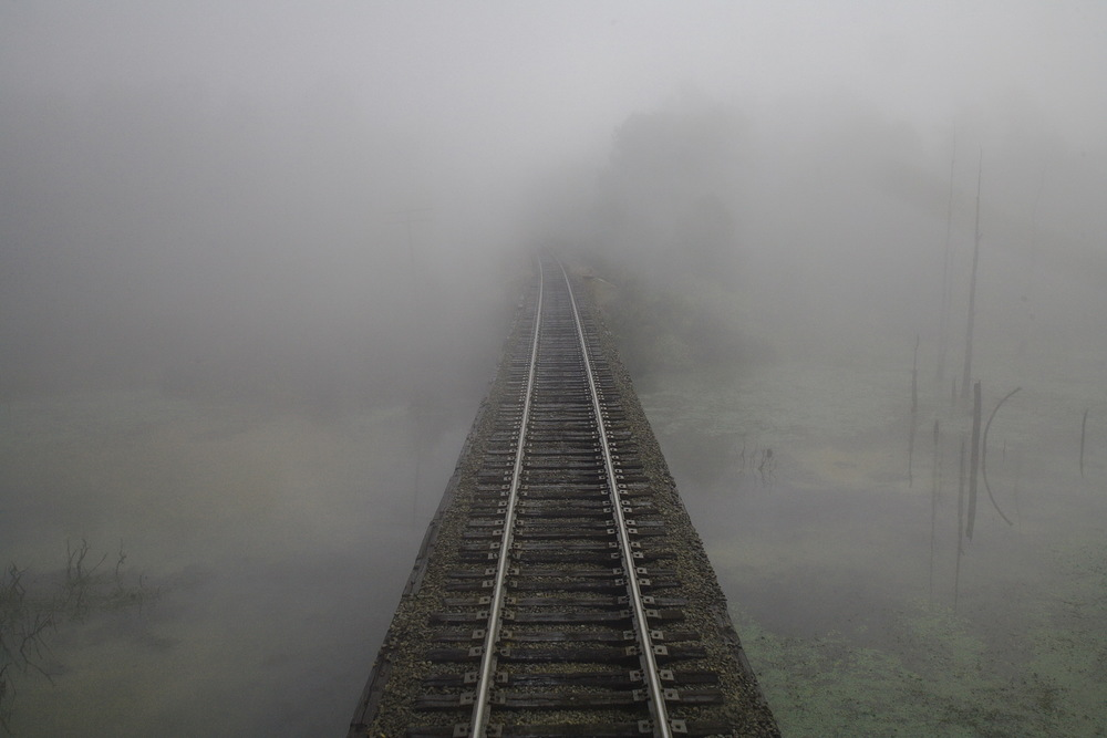 Texarkana TX 10-20-06 Amtrak Train 21 Foggy Swamp Seen From Rear Sleeper Door.jpg