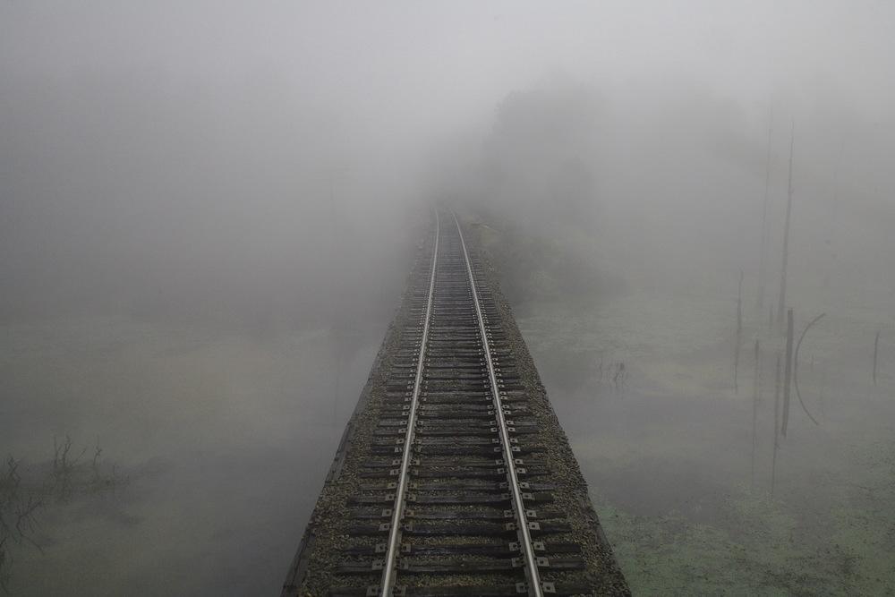 Texarkana TX 10-20-06 Amtrak Train 21 Foggy Swamp Seen From Rear Sleeper Door.jpg